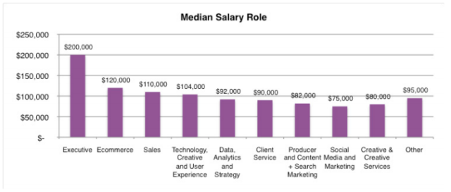 At $200,000, the median salary of Senior Digital Executives is markedly higher than that of the second most highly paid digital professionals .